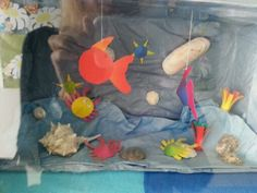 Aquarium 1 Aquarium, Baby, School, Creative, Goldfish Bowl, Aquarium Fish Tank, Baby Humor, Aquarius, Infant