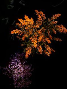 »Flowerwork«