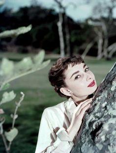 theniftyfifties:  Audrey Hepburn