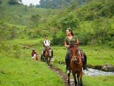 Galopping through the beautiful nature of Colombia - May '13