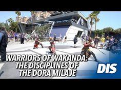 The Warriors of Wakanda: The Disciplines of the Dora Milaje | Avengers Campus - YouTube Dora Milaje, Avengers, Disneyland Resort, Dc Universe, Marvel Dc, Warriors, Youtube, Street View, The Avengers