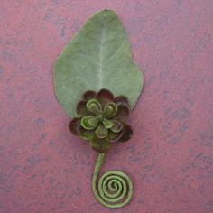 Small Permanent Succulent Boutonniere by JacquelineAhne on Etsy, $4.50