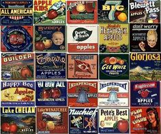 Vintage fruit and vegetable can and crate labels. I've got the labels, now I must frame and hang!