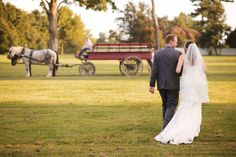 Andrew Jackson's Hermitage Horse and Carriage. This experience is unlike anything you will get anywhere else. #JustinWrightPhotography #HamesWedding #7thPresident #AjsHerm