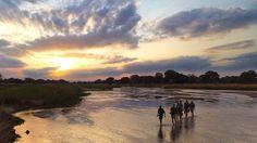 Zambian sunset.