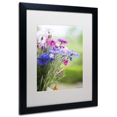 'Bouquet of Colors' by Philippe Sainte-Laudy Framed Photographic Print