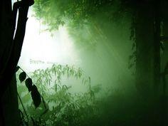 Breath Green ♣
