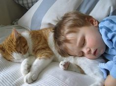 20 evidence that children need cats - @etaboreed1974