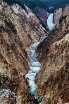 Yellowstone Falls and River, Yellowstone National Park