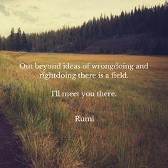 Out beyond ideas of wrongdoing  and rightdoing there is a field. I'll meet you there-Rumi