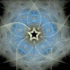 Google Image Result for http://www.complus.co.nz/blogpics/starflower.jpg