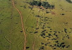 Earthworks by Ancient Amazon Civilization