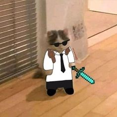 Minecraft, Im Going Crazy, Cute Cat Memes, Response Memes, Fandoms, Baby Cats, Streamers, Yandere, Cool Cats