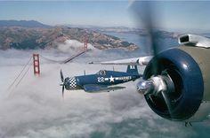 Chance-Vought F4U Corsair over the Golden Gate bridge #aircraft #aviation #piston #ww2 #bridge