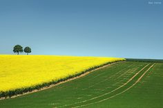 Belgian countryside