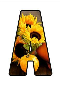 Sunflower Tree, Monogram Alphabet, Autumn Activities, Mondrian, Kandinsky, Font Styles, Lettering, Preschool, Education