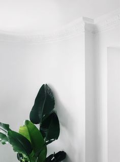 Lisa Olsson Lisaplace Apartment Home Interior Lägenhet Hem