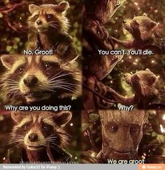 We are groot ! ♥