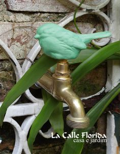 Landscape Design, Garden Design, Florida, Garden Types, Food Diary, Outdoor Projects, Food Hacks, Food Tips, Garden Plants