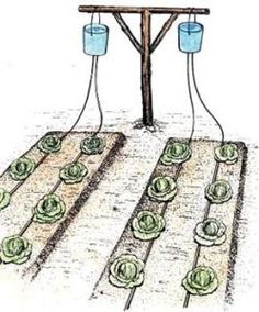 DIY Home Irrigation System. Bucket drip kits are a modest one time cost which allows for minimal use of water. Drip irrigation, originally developed in Israel, targets precious water to where it needs to go, the roots of the plants. Backyard Garden Landscape, Large Backyard, Garden Fencing, Garden Beds, Backyard Landscaping, Indoor Garden, Veg Garden, Modern Backyard, Garden Hose