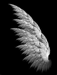 Pics For > White Angel Wings Angel Wings Art, White Angel Wings, Angel Art, Fairy Wings, Angel Wings Pictures, Angel Images, Fractal Art, Fractals, Wings Wallpaper