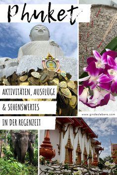 Phuket Thailand in der Regenzeit - zahlt sich das aus? Ja! Denn auch für Phuket gilt: tolle Erlebnisse, Spaß, günstiger und vor allem weniger Touristen. Unsere Tipps für Phuket -  Aktivitäten, Ausflüge und Sehenswertes in der Regenzeit. Big Buddha, Wat Chalong Tempel, Phuket Elephant Sanctuary und Patong www.gindeslebens.com #Thailand #Phuket #Aktivitäten #Ausflüge #Sehenswertes #Tipps #Regenzeit Phuket Travel, Thailand Travel, Phuket Thailand, Tromso, Elephant Sanctuary Thailand, Bangkok, Stuff To Do, Things To Do, Patong Beach