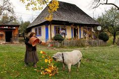 Romania - Carpathian Garden - photo by Mihai Grigorescu Albania Travel, Romanian People, World Icon, Visit Romania, Native Country, Bucharest, World Cultures, Beautiful Places To Visit, Ursula