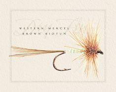 fly fishing fly prints - Google Search
