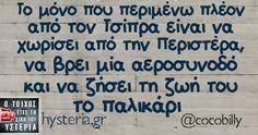 Το μόνο που περιμένω πλέον από τον Τσίπρα είναι να χωρίσει από την Περιστέρα, να βρει μία αεροσυνοδό και να ζήσει τη ζωή του το παλικάρι Sarcastic Quotes, Funny Quotes, Free Therapy, Greek Quotes, Puns, True Stories, Haha, Jokes, Humor