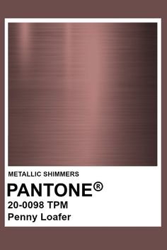 Penny Loafer #Metallic #Pantone #Color Pantone Colour Palettes, Pantone Color, Brown Pantone, Pantone Swatches, Armadura Medieval, Benjamin Moore Colors, Red Barns, Paint Colors For Home, Colour Board