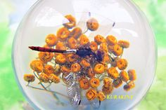 Paperweight Dragonfly  gift for boy birthday a summer