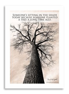 Quotes that I find inspirational or appropriate with my photography ;)    This tree is seen my people everyday as they drive past it and no one recognised it when this photo was exhibited