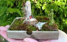HOW SMALL CAN YOU GROW? | Miniature gardening's wee wonderful worlds | Text by M.P. Klier | Sierra Magaine