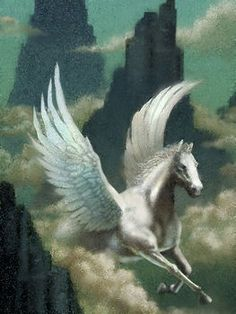 Pegasus symbolizes heightened power of the natural forces - the innate capacity for spiritualization and for inverting evil into good.