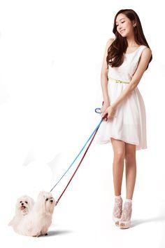 china-perro.png (800×1199)