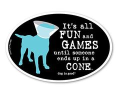 It's All Fun and Games until Someone ends up in a Cone Ov... http://www.amazon.com/dp/B00ENNX746/ref=cm_sw_r_pi_dp_0sjoxb1FBP3F1