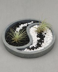 Relaxing Yin Yang inspired Zen terrarium comes with colorful pebbles and two air plants.