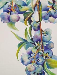 Blueberry watercolor by Janne Matter. #berryblue