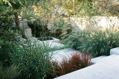 Contemporary landscape with stone lounging area, simple planting of ornamental grasses, change of grade to create sense of separate rooms