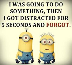 Funny Minions Quotes And Pictures Minions Love, Minions Despicable Me, Funny Minion, Minion Stuff, Minion Jokes, New Quotes, Funny Quotes, Funny Memes, Hilarious