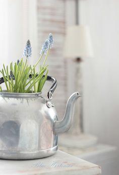 Voorjaar in je theepot! #bollen #lente