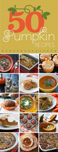 This is an amazing roundup of fairly healthy Pumpkin recipes! --> Check out 50 Pumpkin Recipes...some GREAT recipes here!