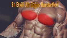 En iyi alt göğüs kası hareketleri, pektoral kasların alt kısmının gelişmesini hedefleyerek göğüslere görsel olarak çekici bir görünüm kazandırır. Gym Workouts For Men, Workout Routine For Men, Bench Press, Mens Fitness, Bodybuilding, Male Fitness, Men's Fitness, Mens Fitness Workouts, Build Muscle