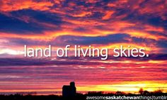 After all the places I've travelled I truly believe that Saskatchewan has the most beautiful skies in the entire world. Beautiful Sunset, Beautiful Places, Land Of The Living, Sky Art, Gods Creation, Sunset Photos, Amazing Nature, Places To See, Cool Pictures