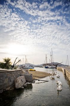 ~Naousa Marina, Paros, Greece~ I sat on that brick wall to eat lunch! Santorini, Mykonos, Paros Greece, Paros Island, Greek Beauty, Greece Travel, Greek Islands, Places To See, Beautiful Places