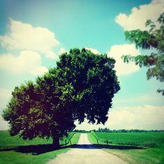 #julyphotochallengefpoe Instagram photos | Webstagram - the best Instagram viewer
