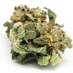How to Pair Food and Drinks with Cannabis Terpenes - http://houseofcobraa.com/2016/11/29/51279/