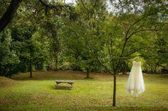 #Свадьба_в_Испании Outdoor Furniture, Outdoor Decor, Bench, Park, Home Decor, Woods, Naturaleza, Scenery, Decoration Home