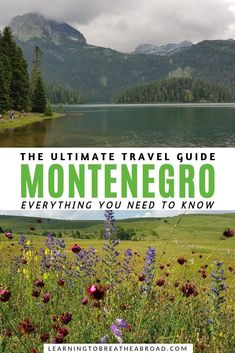 The Ultimate Montenegro Travel Guide: Everything You Need To Know Europe Travel Guide, Travel Guides, Travelling Europe, Traveling, European Destination, European Travel, Montenegro Travel, Amazing Destinations, Travel Destinations
