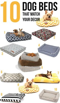Pet Approved Dog Beds for Every Decor - 10 Stylish Dog Beds that Match your Decor